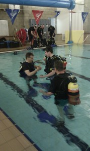 Trainees put theory into practice in pool training sessions.